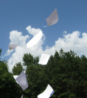 flying_paper