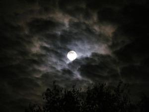Scary-moon